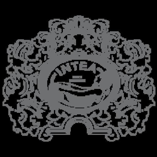 Favicon Logo INTEA